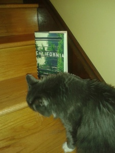 Smokey is checking out California in hardcover