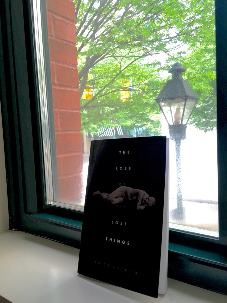 I was in Virginia when I read this book, which is why I tried to get a photo of the cool lamp in the background, thus the crappy cover shot